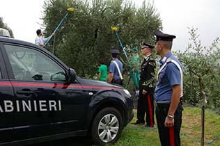 carabinieri lavoro in nero