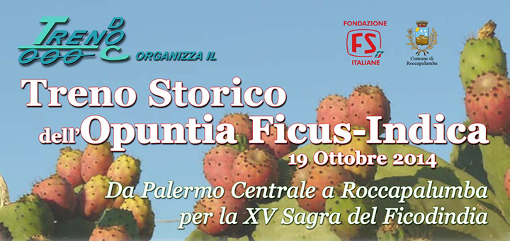 rocca-palumbafico-d'india--treno-storico-opuntia-ficus-indica--sicilia-provincia-trapani-marsala-agricoltua-news-turismo-evento-marsalanewes