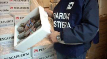 guardia-costiera-ufficio-circondariale-marittimo-marsala-controlli-amministrativi-pesca-pescato-filiera-marsalanews-cronaca-news