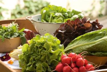 agricoltura-biologica-cibo, biologico-produzioni-agricole,