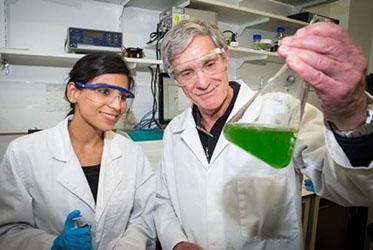 Acqua e luce del sole 'chiave'per produrre carburante pulito  Nella foto i ricercatori dell'Australian national univerisity Kastoori Hingorani (L) e il professor Ron Pace (foto: Stuart Hay)