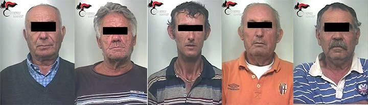 arrestati,furto,olive