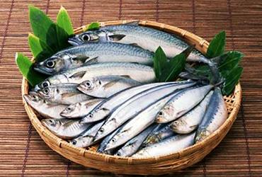 pesce-sano-genuino-progetto-cnr-unione-europea