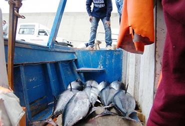 pesca-tonno-controlli-guardia-costiera