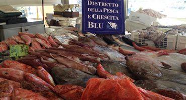pesce-pescato-banco-vendita-prodotti-ittici-sicilia