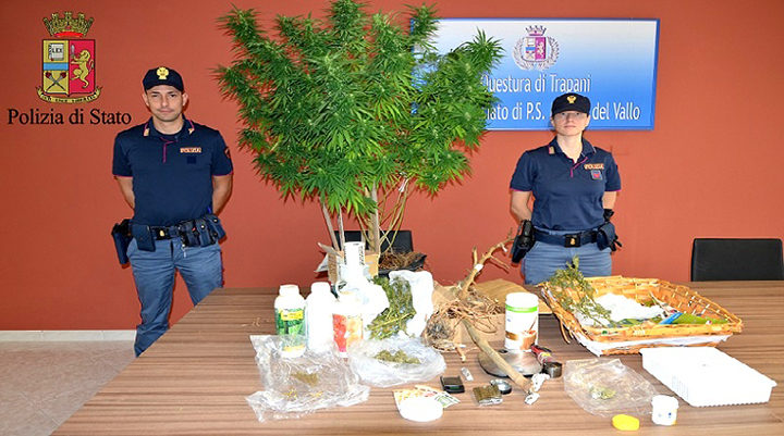 """Scoperta un'altro coltivatore di """"marijuana"""", arrestato un 31enne a Mazara"""