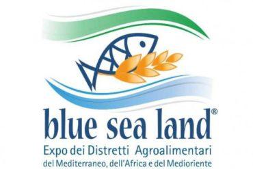 Image result for blue sea land 2019