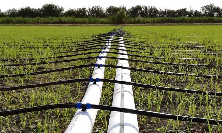 Marsala capofila italiano per il riutilizzo delle acque reflue in agricoltura